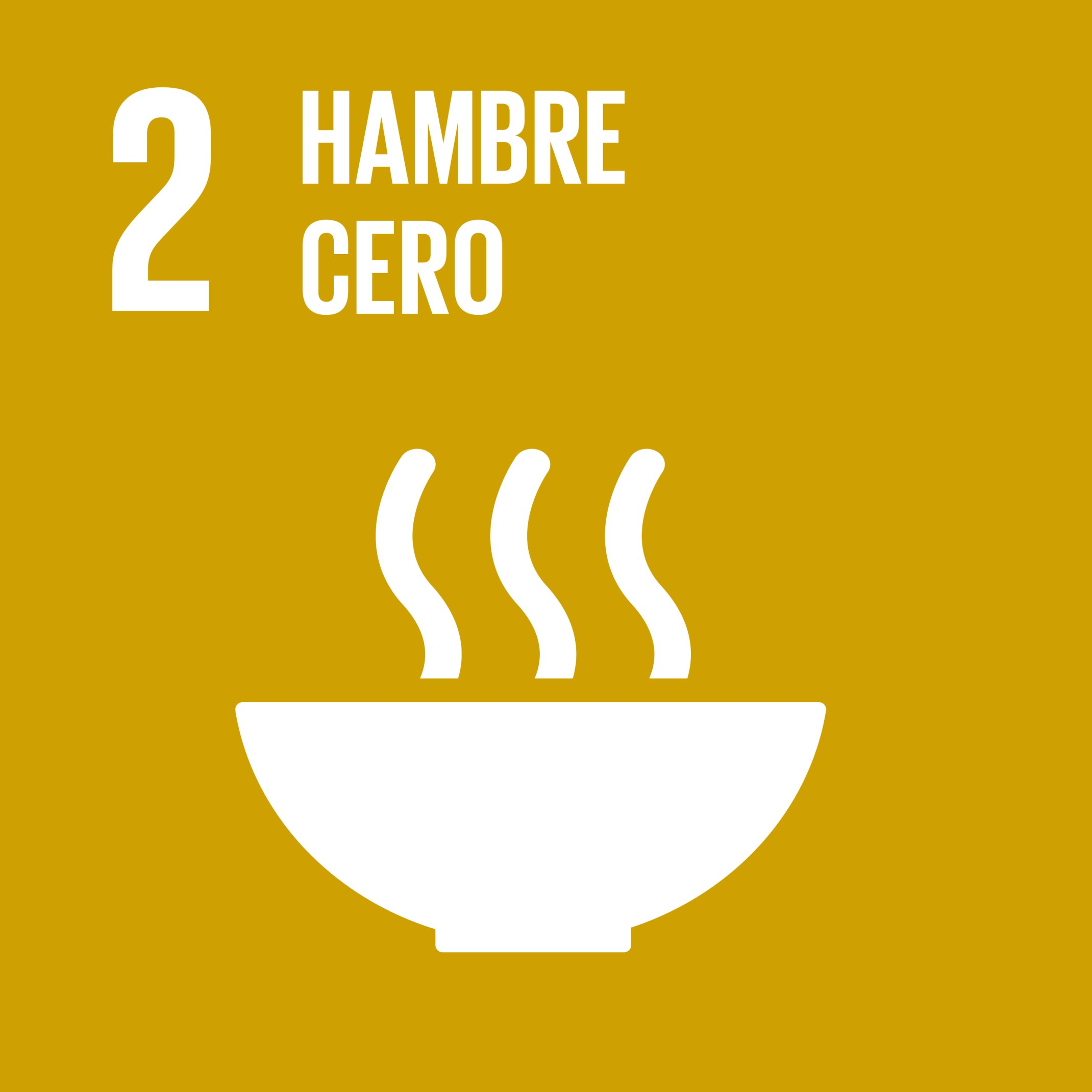 Gobierno presenta Hoja de Ruta para el logro del ODS2 «Hambre Cero» en el país