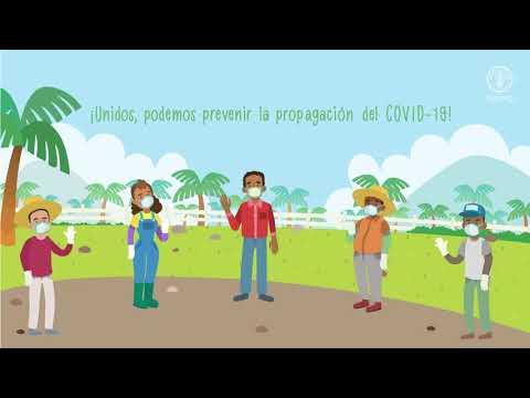 Consejos de prevención ante el COVID19 para productores y productoras